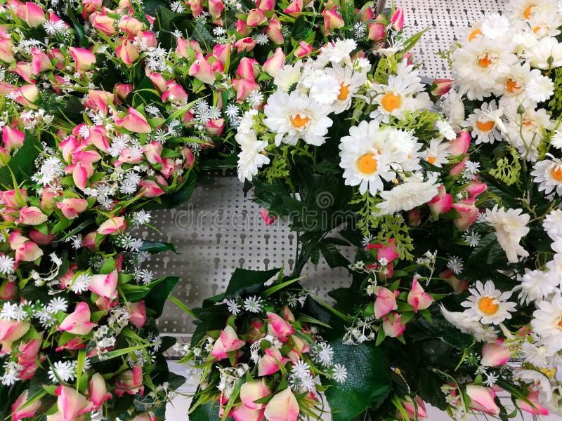 Ζωηρόχρωμα διακοσμητικά λουλούδια άσπρα και ρόδινα στοκ φωτογραφίες