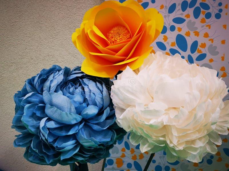 Ζωηρόχρωμα διακοσμητικά λουλούδια κοντά σε έναν τοίχο στοκ φωτογραφίες με δικαίωμα ελεύθερης χρήσης