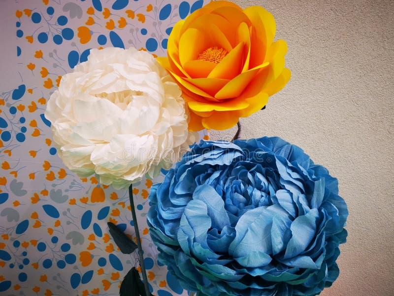 Ζωηρόχρωμα διακοσμητικά λουλούδια κοντά σε έναν τοίχο στοκ εικόνα με δικαίωμα ελεύθερης χρήσης