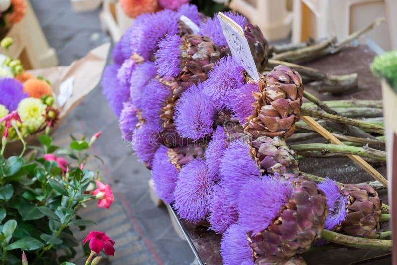Ζωηρόχρωμα λουλούδια αγκιναρών για την πώληση στην τοπική αγορά οδών Προβηγκία στοκ φωτογραφία με δικαίωμα ελεύθερης χρήσης