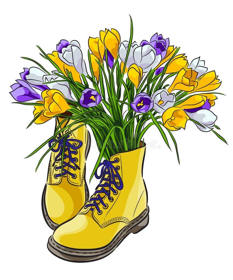 Ζωηρόχρωμα λουλούδια κρόκων άνοιξη στα παπούτσια Ανθοδέσμη των λουλουδιών επίσης corel σύρετε το διάνυσμα απεικόνισης ελεύθερη απεικόνιση δικαιώματος