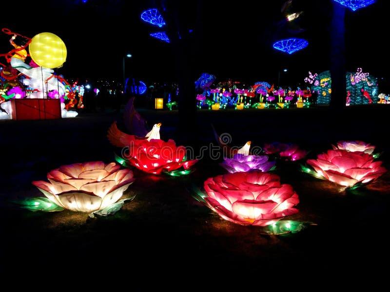 Ζωηρόχρωμα λουλούδια με τα πουλιά στο κινεζικό φεστιβάλ φαναριών στοκ εικόνα με δικαίωμα ελεύθερης χρήσης