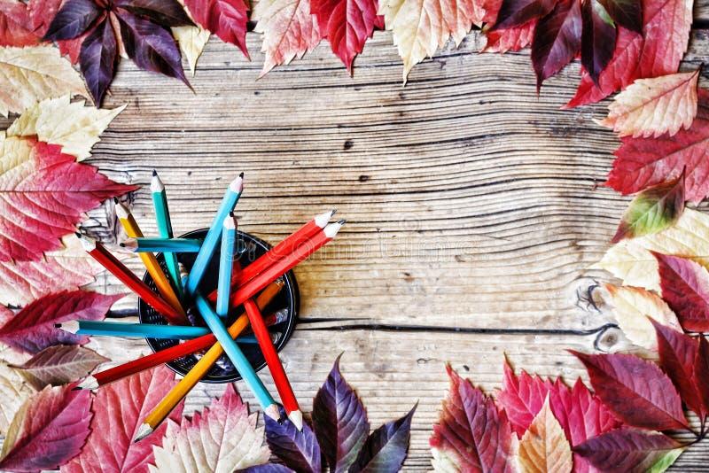 Ζωηρόχρωμα μολύβια, μήλο και ξηρά φύλλα φθινοπώρου στον ξύλινο πίνακα στοκ εικόνα με δικαίωμα ελεύθερης χρήσης