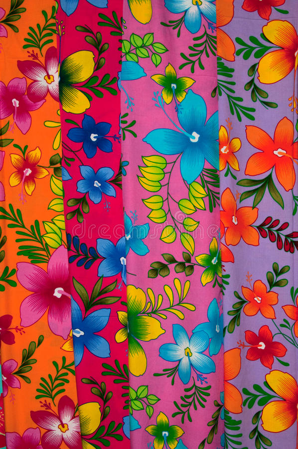 ζωηρόχρωμα σαρόγκ στοκ εικόνα με δικαίωμα ελεύθερης χρήσης