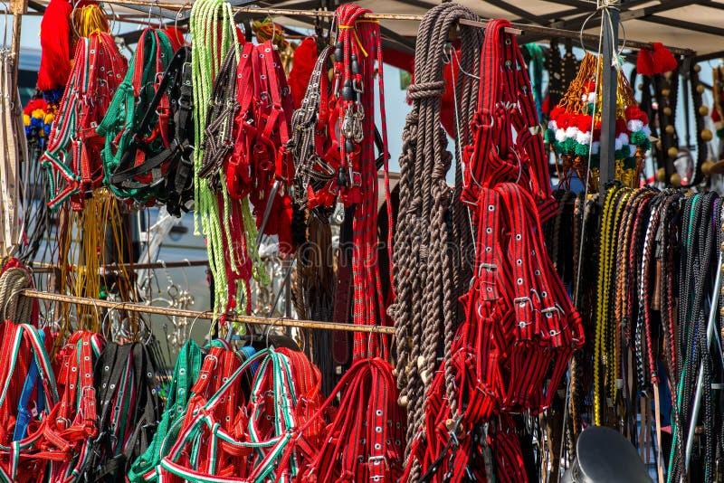 Ζωηρόχρωμα σχοινιά αλόγων halter στον τοπικό αγώνα αλόγων στοκ φωτογραφίες με δικαίωμα ελεύθερης χρήσης