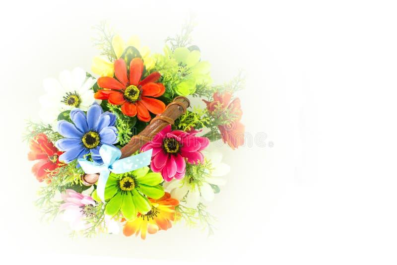 Ζωηρόχρωμα όμορφα λουλούδια στοκ εικόνα
