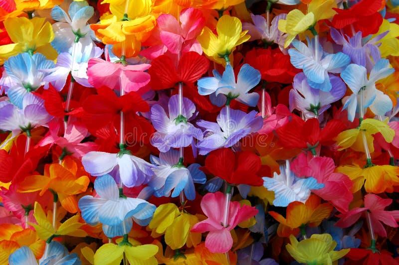ζωηρόχρωμα leis στοκ φωτογραφίες