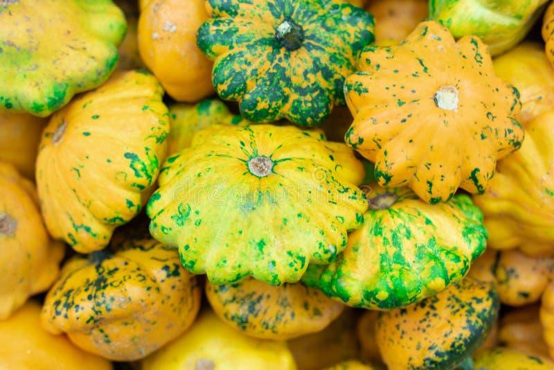 Ζωηρόχρωμες κίτρινες και πράσινες ποικιλίες των κολοκυνθών στο μετρητή καταστημάτων στοκ εικόνες