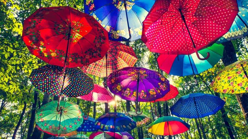 Ζωηρόχρωμες κρεμώντας ομπρέλες δέντρων με τις λάμποντας ακτίνες ήλιων στη μέση ημέρα στο δάσος στοκ εικόνες