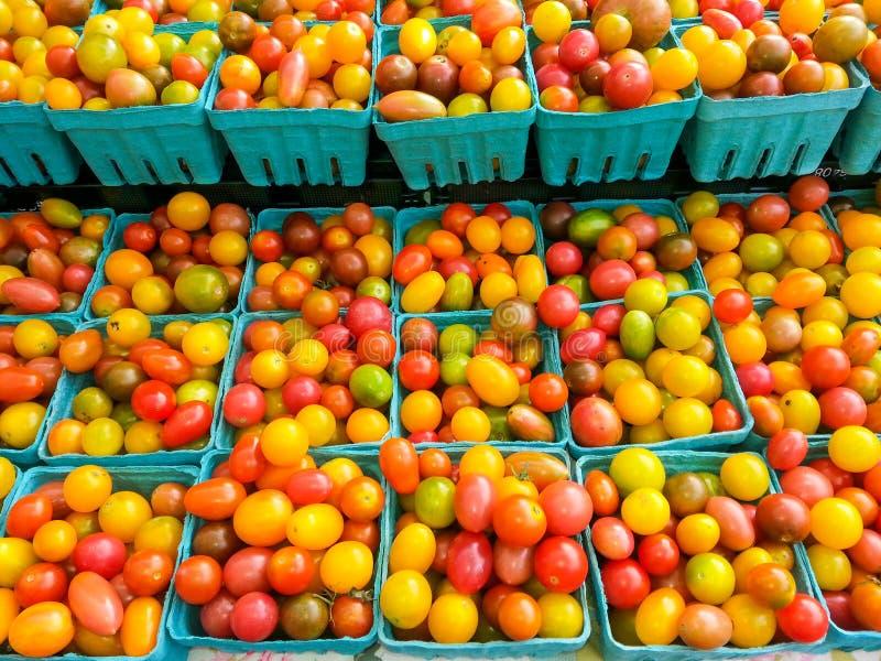 Ζωηρόχρωμες ντομάτες κερασιών στοκ φωτογραφίες με δικαίωμα ελεύθερης χρήσης