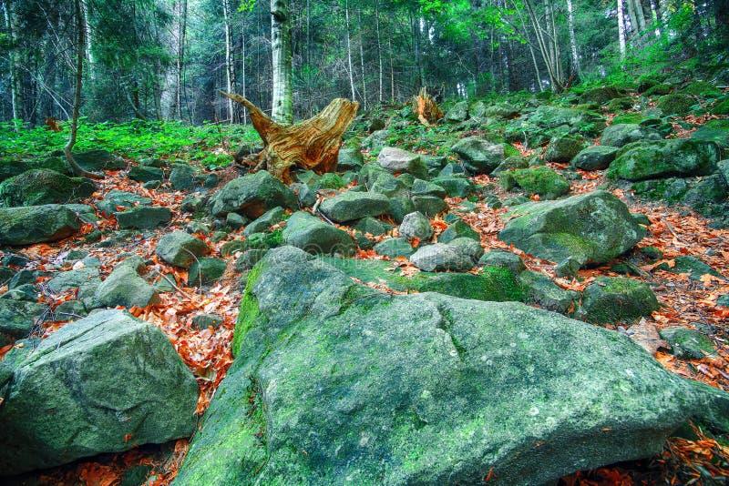 Ζωηρόχρωμες πράσινες mossy μεγάλες πέτρες στοκ φωτογραφίες με δικαίωμα ελεύθερης χρήσης