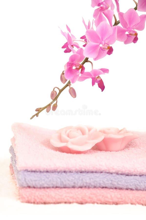 ζωηρόχρωμες orchid λουτρών κα&the στοκ εικόνες με δικαίωμα ελεύθερης χρήσης