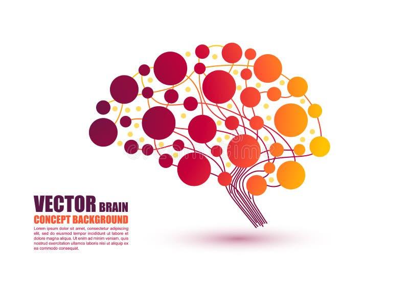 Ζωηρόχρωμη έννοια εγκεφάλου στη διανυσματική απεικόνιση διανυσματική απεικόνιση