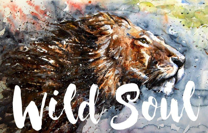 Ζωηρόχρωμη ζωγραφική watercolor ψυχής λιονταριών άγρια, μεγάλο αρπακτικό ζώο πουλιών, σχέδιο της μπλούζας, βασιλιάς των βουνών, ε διανυσματική απεικόνιση