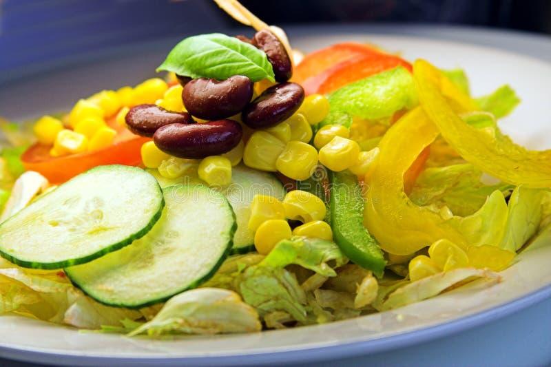 ζωηρόχρωμη σαλάτα στοκ φωτογραφίες