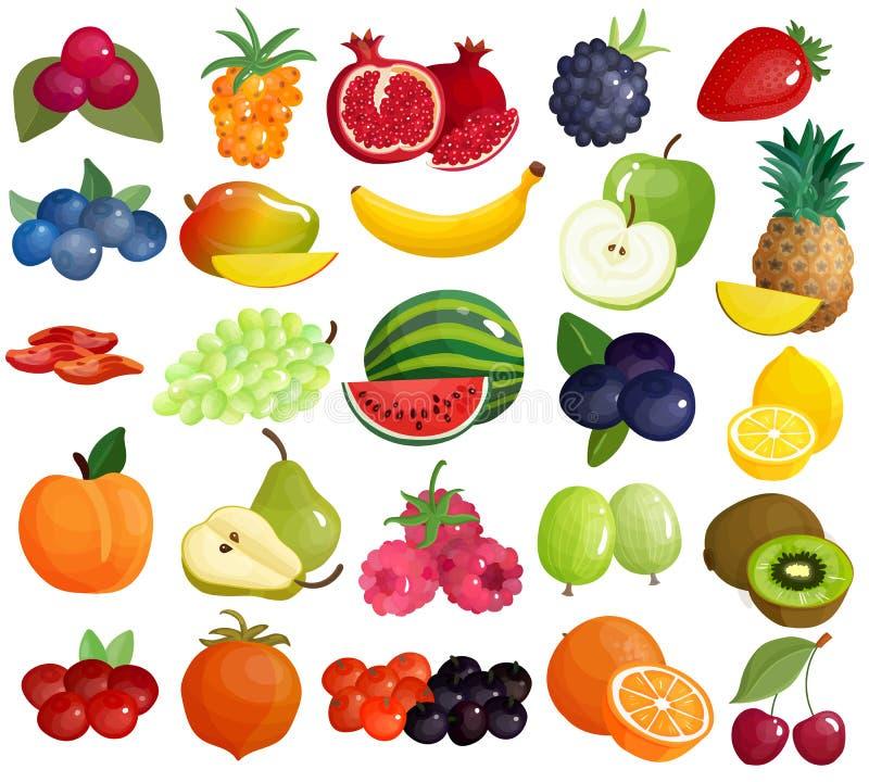 Ζωηρόχρωμη συλλογή εικονιδίων μούρων φρούτων διανυσματική απεικόνιση