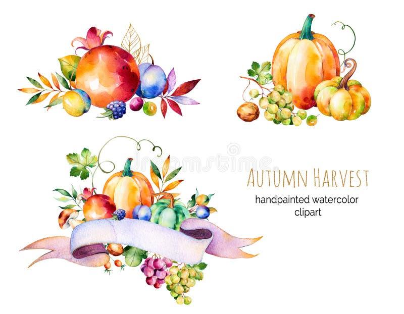 Ζωηρόχρωμη συλλογή φθινοπώρου με τα φύλλα πτώσης, κλάδοι, μούρο διανυσματική απεικόνιση