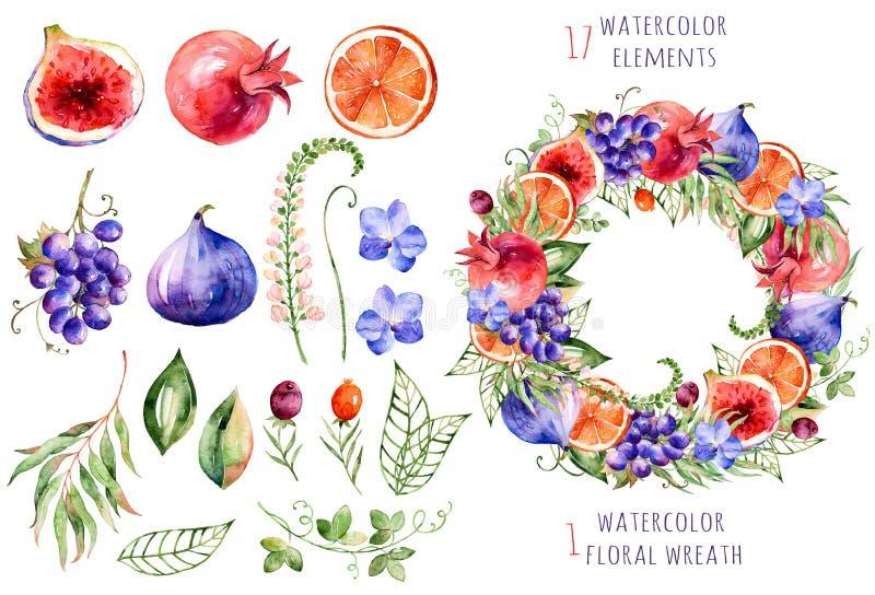 Ζωηρόχρωμη floral και συλλογή φρούτων με τις ορχιδέες, τα λουλούδια, τα φύλλα, το ρόδι, το σταφύλι, το πορτοκάλι, τα σύκα και τα  ελεύθερη απεικόνιση δικαιώματος