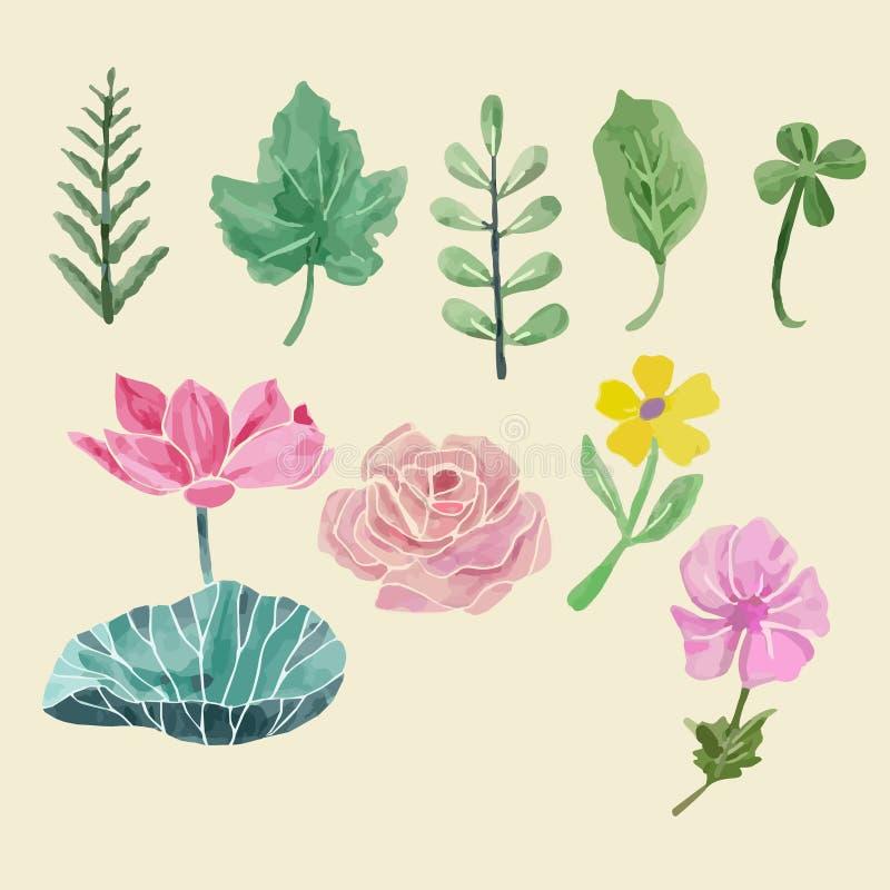 Ζωηρόχρωμη floral συλλογή με τα φύλλα και τα λουλούδια, που σύρουν wate ελεύθερη απεικόνιση δικαιώματος
