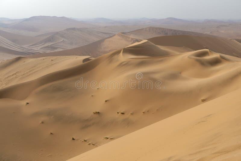 Ζωηρόχρωμοι αμμόλοφοι άμμου στο namib-Naukluft εθνικό πάρκο, Ναμίμπια στοκ φωτογραφία
