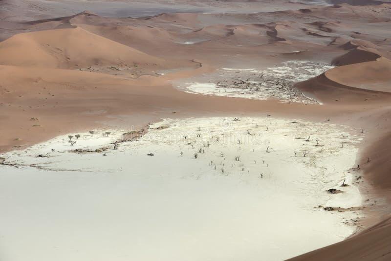 Ζωηρόχρωμοι αμμόλοφοι άμμου στο namib-Naukluft εθνικό πάρκο, Ναμίμπια στοκ φωτογραφίες με δικαίωμα ελεύθερης χρήσης
