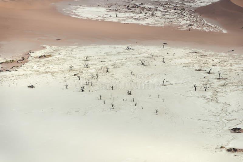 Ζωηρόχρωμοι αμμόλοφοι άμμου στο namib-Naukluft εθνικό πάρκο, Ναμίμπια στοκ εικόνες