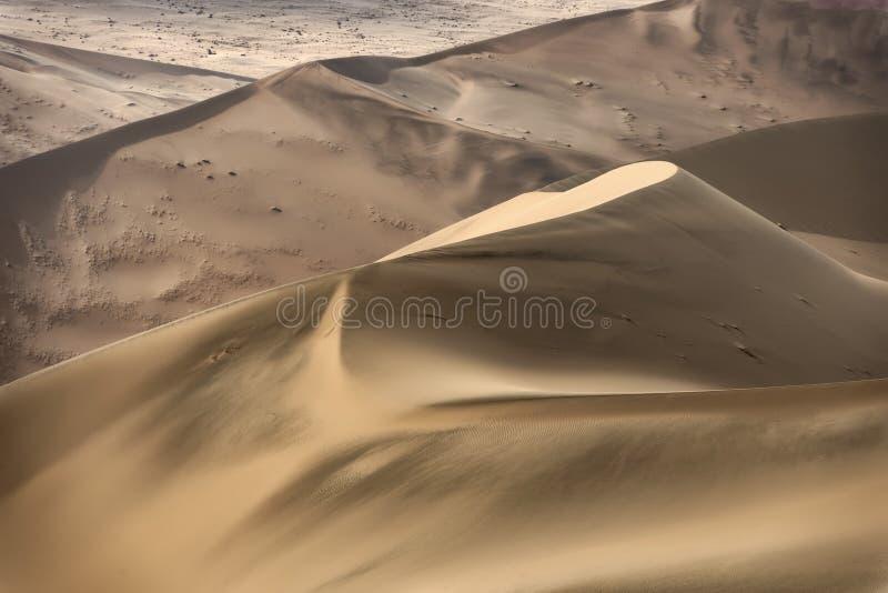 Ζωηρόχρωμοι αμμόλοφοι άμμου στο namib-Naukluft εθνικό πάρκο, Ναμίμπια στοκ φωτογραφία με δικαίωμα ελεύθερης χρήσης