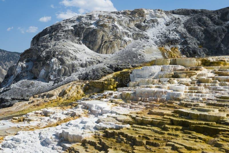Ζωηρόχρωμοι γεωλογικοί σχηματισμοί στα πεζούλια στο μαμμούθ καυτό πεζούλι ανοίξεων, εθνικό πάρκο Yellowstone, Ουαϊόμινγκ, ΗΠΑ στοκ εικόνα με δικαίωμα ελεύθερης χρήσης
