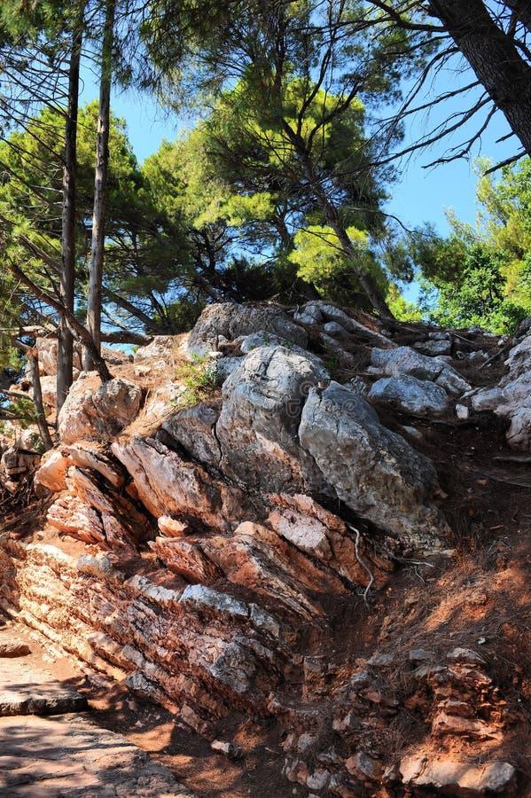 Ζωηρόχρωμος, απότομος βράχος πετρών κοντά στην εξωτική πορεία στο βοτανικό κήπο Μαυροβούνιο, Ευρώπη πάρκων Milocer στοκ φωτογραφία με δικαίωμα ελεύθερης χρήσης