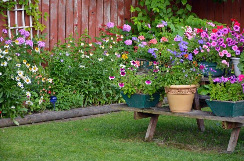 Ζωηρόχρωμος θερινός κήπος στοκ φωτογραφίες