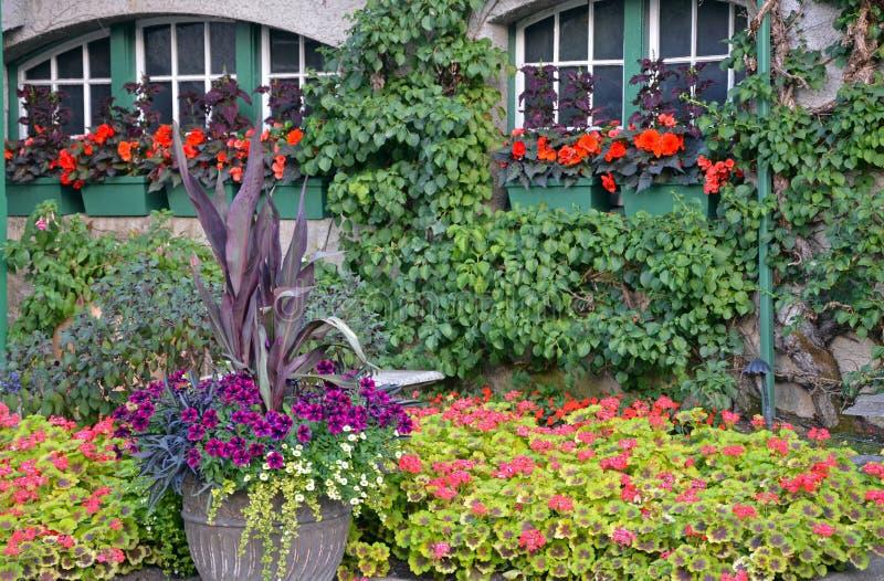 Ζωηρόχρωμος κήπος θερινού patio στοκ εικόνα