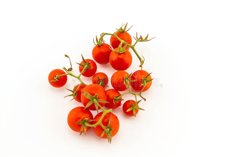 Ζωηρόχρωμος της φρέσκιας κόκκινης ντομάτας στο λευκό στοκ εικόνες