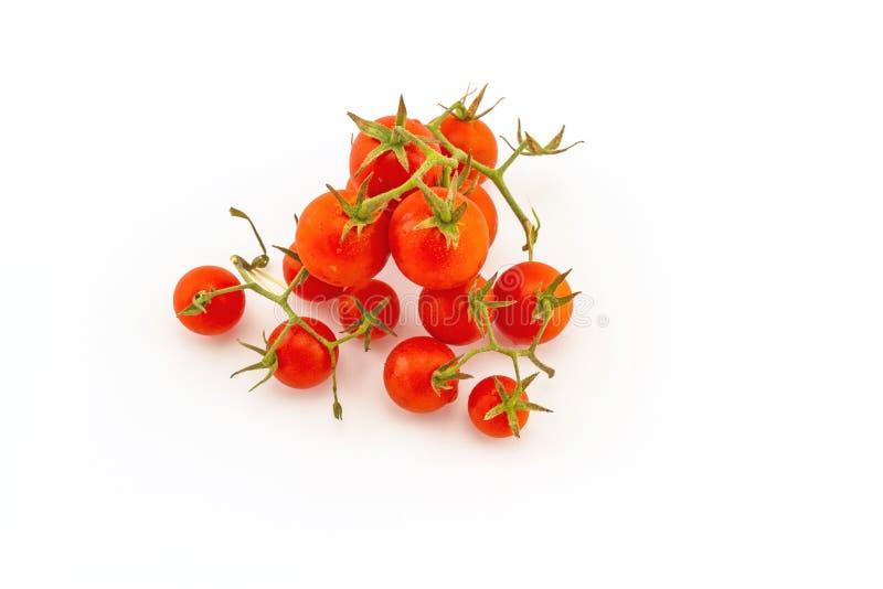 Ζωηρόχρωμος της φρέσκιας κόκκινης ντομάτας στο λευκό στοκ φωτογραφίες
