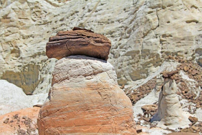 Ζωηρόχρωμος φυσικός στενός επάνω toadstool στοκ φωτογραφία