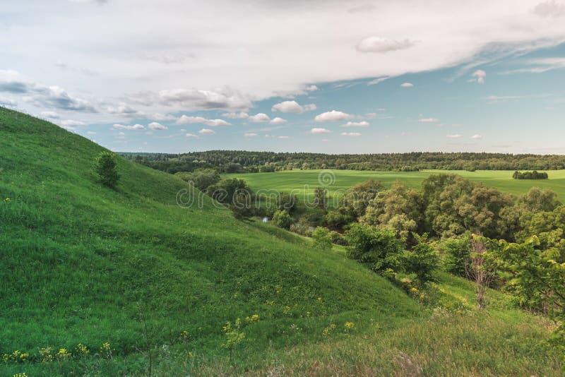 Ζωηρόχρωμος φωτεινός ηλιόλουστος θερινός πράσινος τομέας, θερινό τοπίο ποταμών με τον μπλε νεφελώδη ουρανό, δέντρα και λόφοι στοκ φωτογραφίες με δικαίωμα ελεύθερης χρήσης