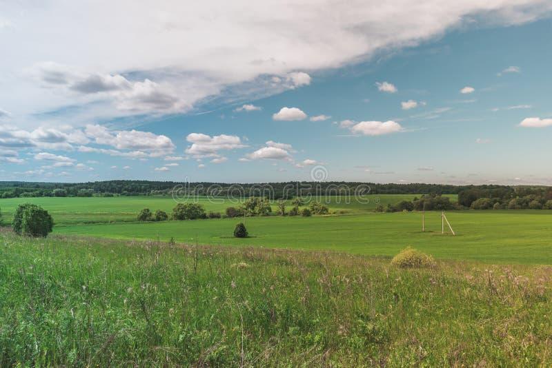 Ζωηρόχρωμος φωτεινός ηλιόλουστος θερινός πράσινος τομέας, θερινό τοπίο ποταμών με τον μπλε νεφελώδη ουρανό, δέντρα και λόφοι στοκ εικόνες