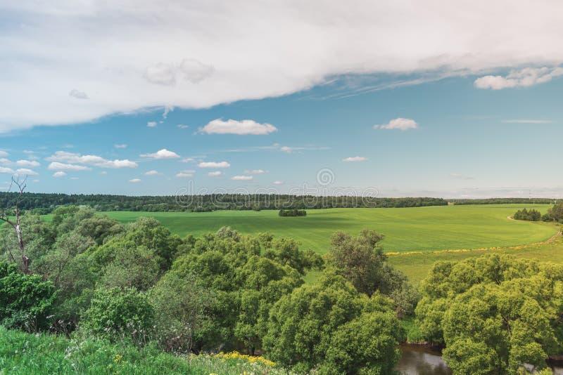Ζωηρόχρωμος φωτεινός ηλιόλουστος θερινός πράσινος τομέας, θερινό τοπίο ποταμών με τον μπλε νεφελώδη ουρανό, δέντρα και λόφοι στοκ εικόνες με δικαίωμα ελεύθερης χρήσης