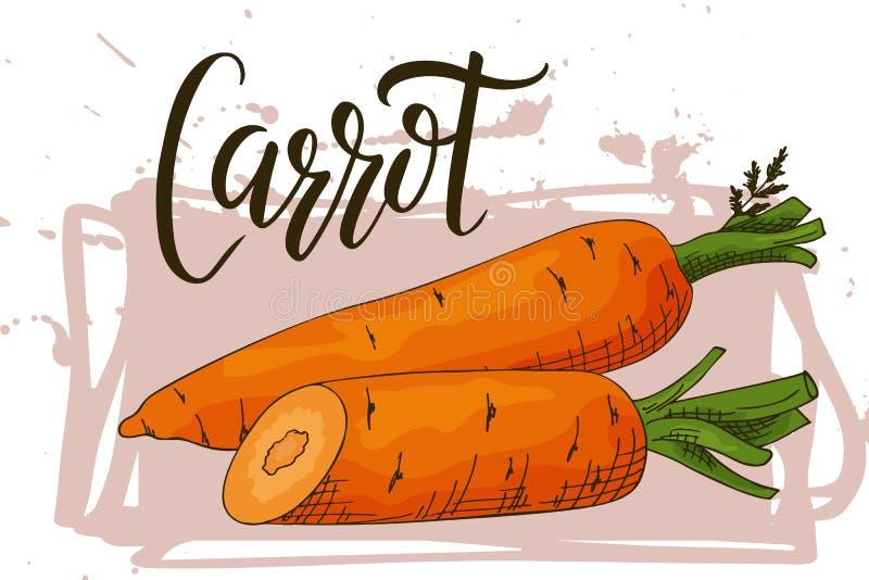 Ζωηρόχρωμο λαχανικό σκίτσων Υγιής αφίσα τροφίμων Σχέδιο αγοράς αγροτών με το καρότο επίσης corel σύρετε το διάνυσμα απεικόνισης απεικόνιση αποθεμάτων
