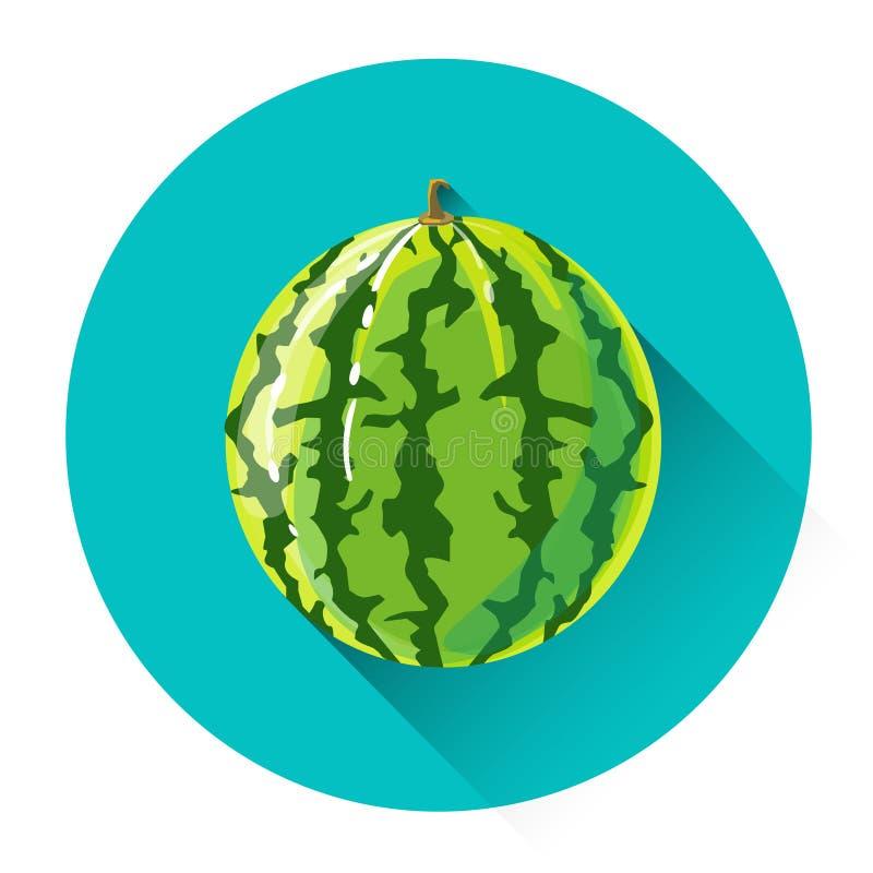 Ζωηρόχρωμο εικονίδιο φρούτων καρπουζιών διανυσματική απεικόνιση