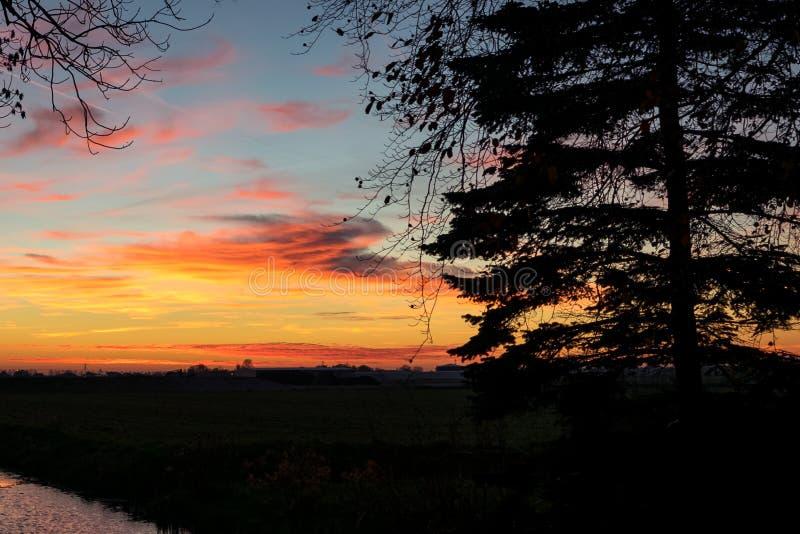 Ζωηρόχρωμο ηλιοβασίλεμα πέρα από το ολλανδικό τοπίο κοντά στο γκούντα, Ολλανδία Ένα δέντρο σκιαγραφείται ενάντια στον ουρανό βραδ στοκ εικόνες