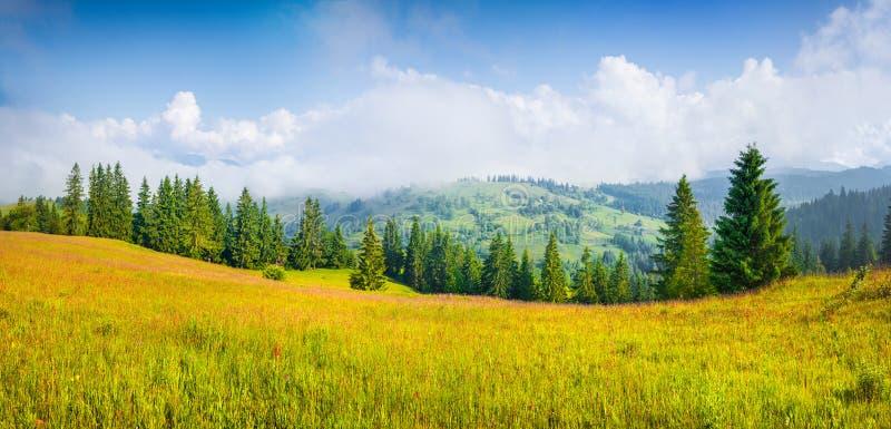 Ζωηρόχρωμο θερινό πανόραμα του ομιχλώδους ορεινού χωριού στοκ εικόνες με δικαίωμα ελεύθερης χρήσης