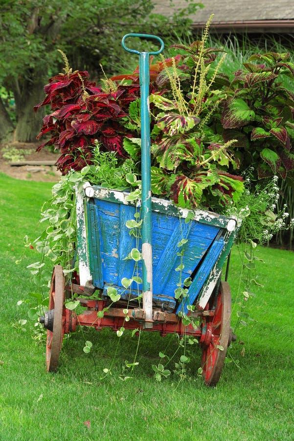 Ζωηρόχρωμο κάρρο κήπων στοκ φωτογραφίες με δικαίωμα ελεύθερης χρήσης