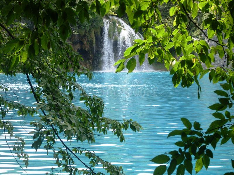 Ζωηρόχρωμο και δονούμενο τοπίο της ακτής λιμνών Ήρεμο τοπίο χρήσιμο ως υπόβαθρο Χαμηλότερο φαράγγι λιμνών Λίμνες Plitvice εθνικές στοκ εικόνες με δικαίωμα ελεύθερης χρήσης