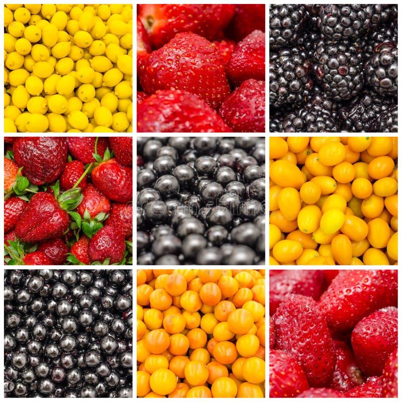 Ζωηρόχρωμο κολάζ υποβάθρου φρούτων στοκ φωτογραφίες με δικαίωμα ελεύθερης χρήσης