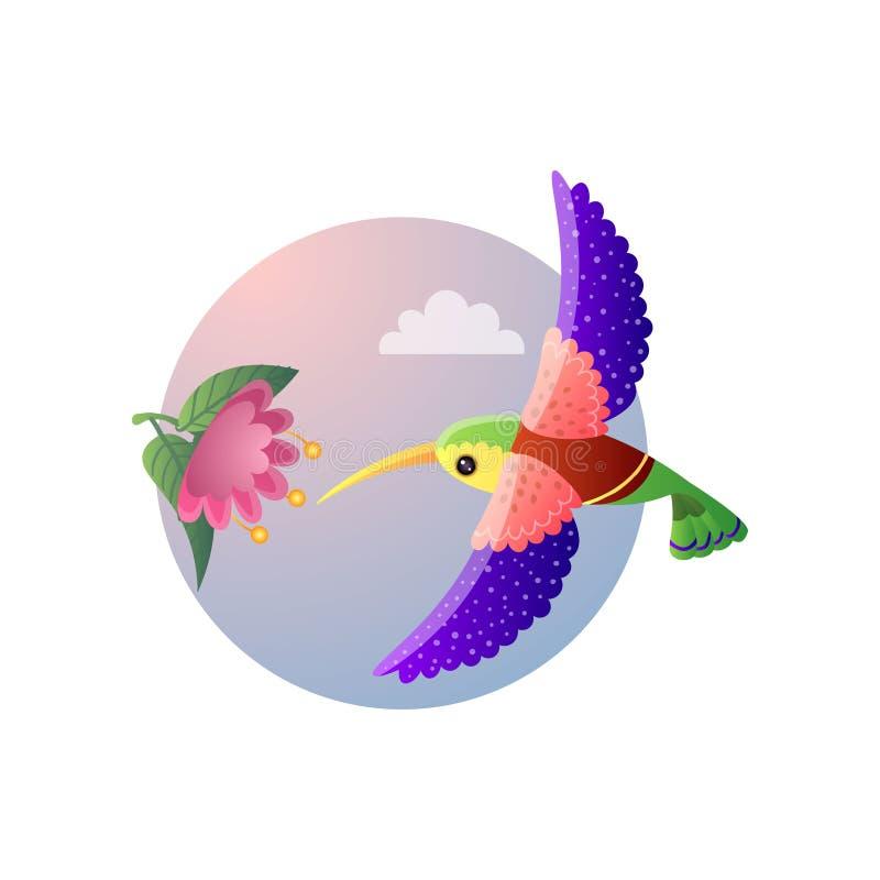 Ζωηρόχρωμο μικρό κολίβριο πουλιών με το φωτεινό φτέρωμα που πετά στο λουλούδι διανυσματική απεικόνιση