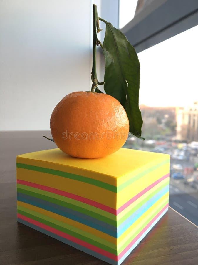 Ζωηρόχρωμο πορτοκάλι στοκ εικόνες