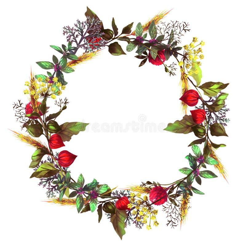Ζωηρόχρωμο στεφάνι με τα χορτάρια και τα λουλούδια ελεύθερη απεικόνιση δικαιώματος