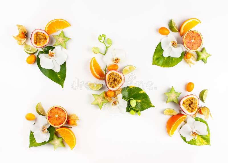 Ζωηρόχρωμο σχέδιο ολόκληρων και των τεμαχισμένων εξωτικών φρούτων με τα τροπικά φύλλα και τα λουλούδια στοκ φωτογραφία με δικαίωμα ελεύθερης χρήσης