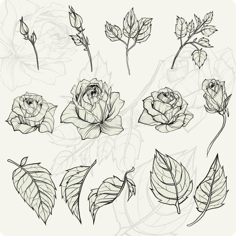 ζωηρόχρωμο σύνολο λουλουδιών στοιχείων σχεδίου διανυσματική απεικόνιση