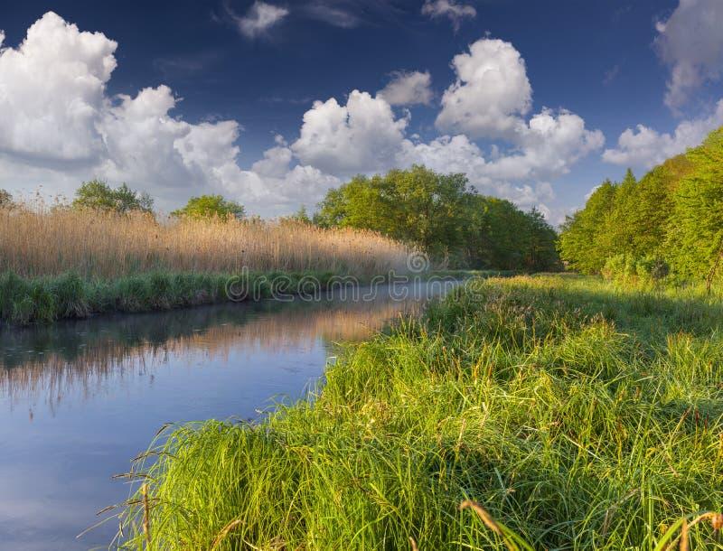 Ζωηρόχρωμο τοπίο άνοιξη στο misty ποταμό στοκ εικόνες